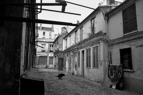 NB1 1991_006_72p_rue Denoyez.jpg